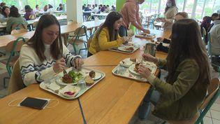 A la cantine de la cité scolaire de Nontron, au menu, c'est 100 % bio et local. (P. Tinon / France Télévisions)