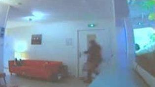 Le dentiste victime du vol avait diffusé sur internet les images de vidéosurveillance permettant de confondre l'auteure présumée du larcin. (FRANCE 3 LORRAINE)