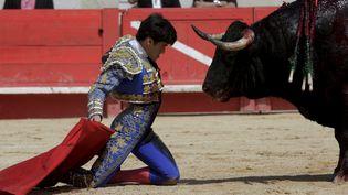 Le torero Juan Bautista défie le taureau lors d'une corrida, le 14 mai 2016, à la feria de Nîmes (Gard). (MAXPPP)