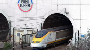 Un train Eurostar sort du tunnel sous la Manche, à Coquelles (Pas-de-Calais), le 10 avril 2014. (DENIS CHARLET / AFP)