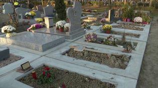 L'état du cimetière de Pantin (Seine-Saint-Denis), le plus grand de France, indigne les familles. Des ossements ont notamment été observés à la surface. (CAPTURE D'ÉCRAN FRANCE 3)