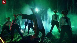 """Extrait du clip de """"The Fox"""", du groupe norvégien Ylvis. (CAPTURE D'ECRAN YOUTUBE / FTVI)"""