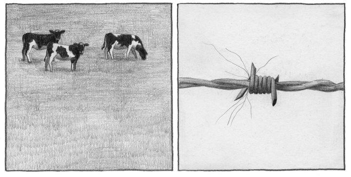 """""""Les têtards"""", détail  (Pascal Matthey)"""