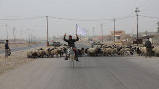 Un civil brandit un drapeau blanc sur une route qui traverse le village de Bazwarya, près de Mossoul (Irak), mardi 1er novembre 2016. (HEMN BABAN / ANADOLU AGENCY)