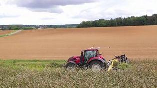 Ruralité : Agri-Échange, un réseau d'entraide entre agriculteurs (FRANCE 3)
