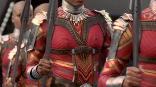 """Une série sur les Amazones du Dahomey, inspiration des guerrières de """"Black Panther"""", est dans les tuyaux. (Capture d'écran youtube)"""