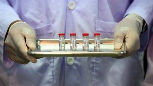 Un vaccin contre le Covid-19 testé actuellement sur des singes en Thaïmande. (MLADEN ANTONOV / AFP)