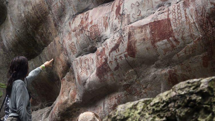 Une anthropologue française, Céline Valadeau, montre un rocher de la collineRaudal de Guayabero, dans laSerrania La Lindosa. Jungle amazonienne du département colombien du Guaviare.  (GUILLERMO LEGARIA / AFP)