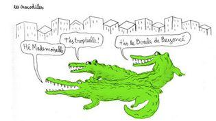 """Case de la BD """"Les Crocodiles"""" de Thomas Mathieu, édition du Lombard  (Thomas  Mathieu, Editions du Lombard)"""