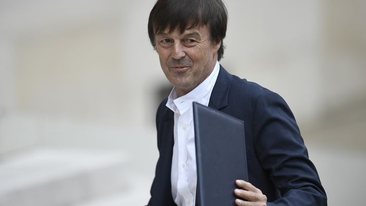Nicolas Hulot, le 18 mai 2017, à Paris. (STEPHANE DE SAKUTIN / AFP)