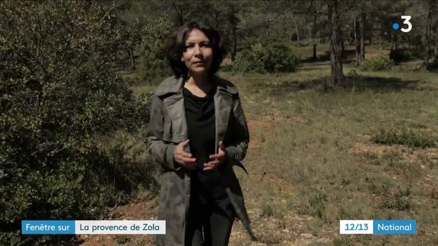 Littérature : Zola et la Provence