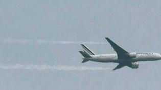 Avion ayantvidangé une partie de son carburant au-dessus du site protégé. ( CAPTURE ECRAN / FRANCE 2)