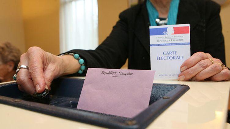 (Y aura-t-il des alliances UMP/Front national aux prochaines élections départementales et régionale ? © Maxppp)