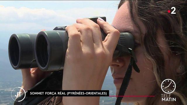 Incendies : dans les Pyrénées-Orientales, les guetteurs déjà sur le qui-vive