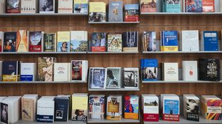 Librairie Gibert Joseph, Paris, septembre 2017  (DENIS MEYER / HANS LUCAS / AFP)