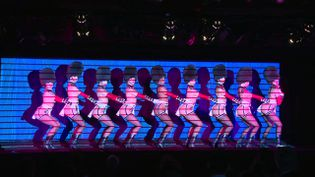 "Les danseuses du Crazy Horse dans le spectacle ""Totally Crazy"" (France 3 Paris Ile de France)"