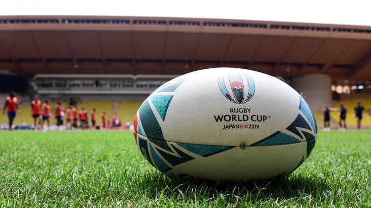 Le Mondial de rugby commence vendredi 20 septembre.  (YANN COATSALIOU / AFP)