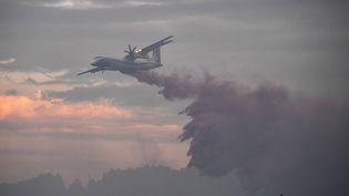 Un avion Dash largue de l'eau sur un feu de forêt dans le sud de la France, en 2017. Photo d'illustration. (PASCAL GUYOT / AFP)
