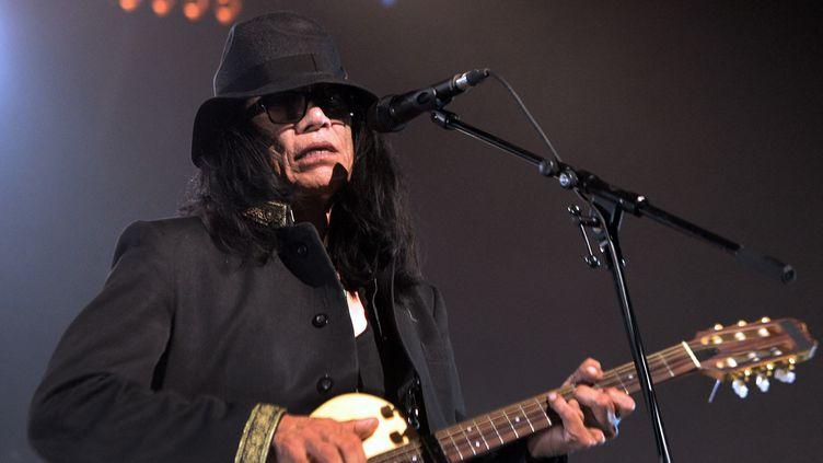 Sixto Rodriguez, en concert au Zénith de Paris, le 4 juin 2013. (PIERRE ANDRIEU / AFP)