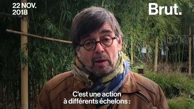 Damien Carême, le maire de Grande-Synthe attaque l'État pour son inaction en matière de lutte contre le réchauffement climatique. Voici sa tribune.