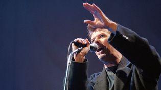 Bowie à Bercy en 1996  (BERTRAND GUAY / AFP)