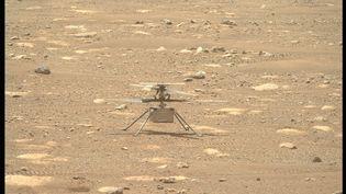 Une photo de l'hélicoptère Ingenuity prise le 9 avril 2021 sur Mars. (NASA/JPL-CALTECH/ASU/HANDOUT / MAXPPP)