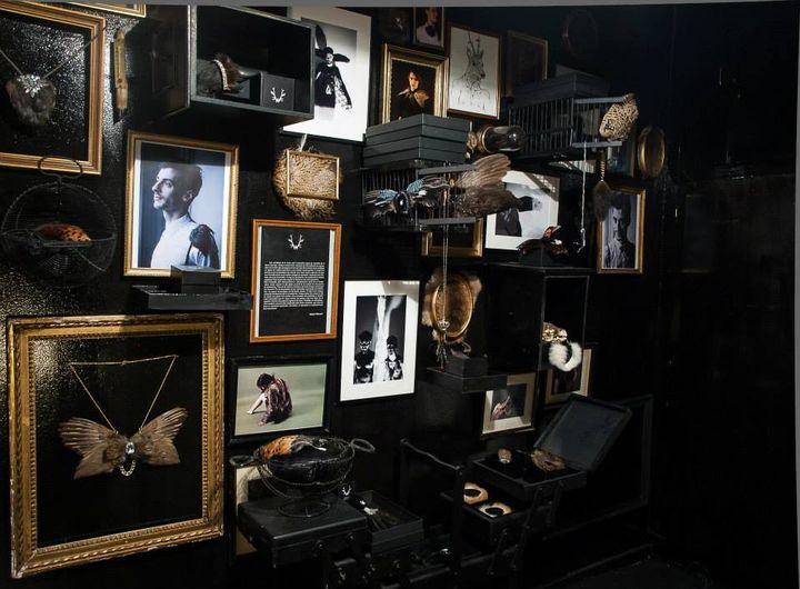 Une partie du cabinet des curiosités de Sylvain Wavrant  (Mickael Halley)