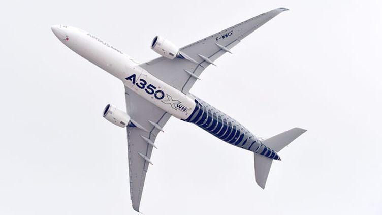 (L'A350, l'une des vedettes de ce salon du Bourget 2015 © MaxPPP)