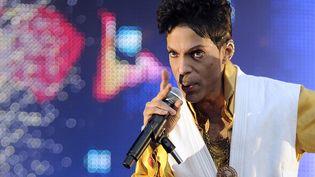 Prince au Stade de France en 2011  (Bertrand Guay/AFP)