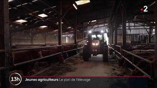 La Bretagne a perdu 30% de ses exploitations agricoles depuis 15 ans. Alors, pour attirer les jeunes agriculteurs, la région lance donc un grand plan d'aides. À 30 ans,Jean-Marie Persehaie a repris l'exploitation familiale, en Ille-et-Vilaine. Un défi dans un secteur en crise. (FRANCE 2)