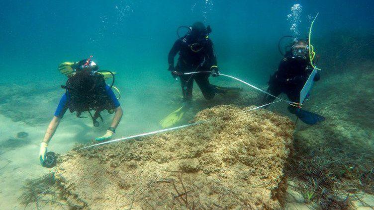 L'équipe archéologique tuniso-italienne à l'œuvre au large de Nabeul (Tunisie) le 13 juillet 2017. (AFP - Institut national du Patrimoine (INP) - University of Sassari)