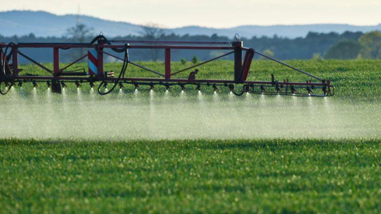 (L'épandage des pesticides est dangereux, aussi, pour le foetus (photo d'illustration) © MaxPPP)