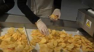 Dans l'Aisne, deux amis d'enfance ont lancé leur marque de chips. C'était il y a un an et aujourd'hui, leur choix s'avère judicieux. (France 3)