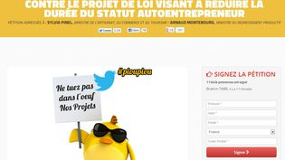 Capture d'écran du site defensepoussins.fr, qui défend les intérêts des autoentrepreneurs, mardi 13 août 2013. (FRANCETV INFO)