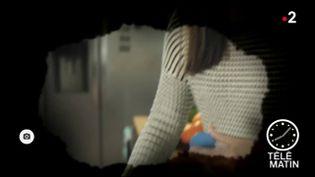 Illustration de la manière dont le glaucome nuit à la vue (France 2)