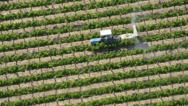 Dans les dix ans à venir, un agriculteur sur deux arrivera à la retraite. (LIONEL LOURDEL / PHOTONONSTOP)