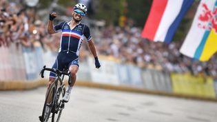 Le Français Julian Alaphilippe sur la ligne d'arrivée des Championnats du monde à Louvain, dimanche 26 septembre. (DAVID STOCKMAN / BELGA MAG / AFP)