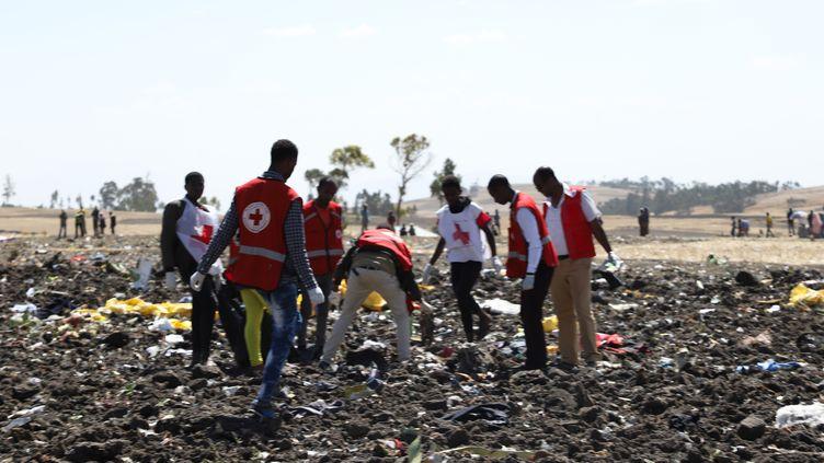 Des équipes de la Croix-Rouge inspectant les débris du vol de la Ethiopian Airline, qui s'est écrasé près d'Addis-Abeba (Ethiopie), le 10 mars 2019. (MICHAEL TEWELDE / AFP)