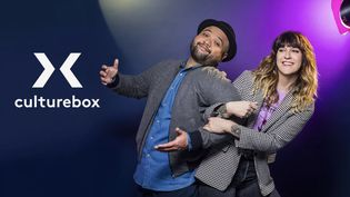 Culture : lancement de Culturebox, la chaîne pour soutenir les artistes (FRANCE 2)