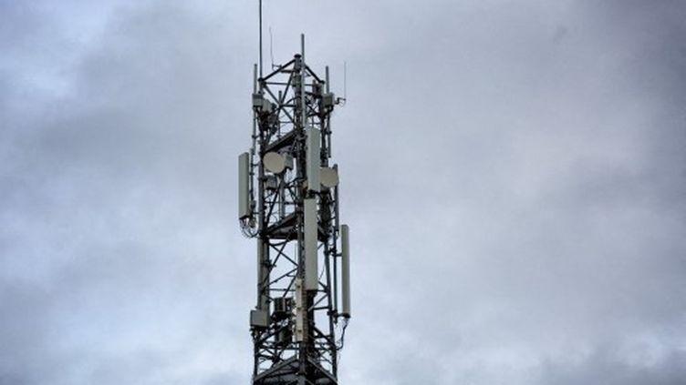 Une antenne-relaispermettant la transmission de la 5G àSaint-Martin-de-Seignanx (Landes), le 30 décembre 2020. (MARTIN NODA / HANS LUCAS)