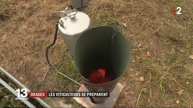 Orages : un dispositif antigrêle pour protéger les vignobles