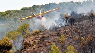 Un incendie s'est déclaré dans l'Hérault, entre Saint-Pons-de-Mauchiens et Villeveyrac mercredi 9 août 2017. (ESDOURRUBAILH / MAXPPP)