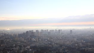 La pollution au dessus de Paris, le 31 décembre 2012. (ERIC GUILLORET / BIOSPHOTO / AFP)