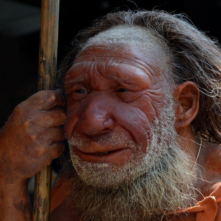 Une reconstitution de l'homme de Néandertal se dresse devant le Musée Néandertal, en Allemagne, entre Mettmann et Düsseldorf, le 13 août 2013. (HORST OSSINGER / DPA)