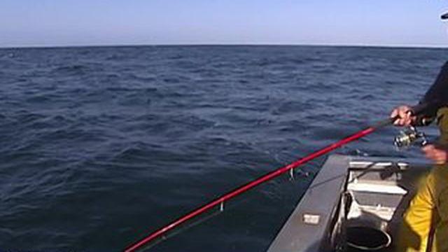La surpêche menace l'océan
