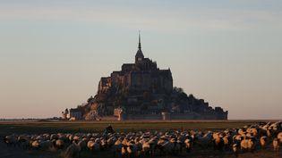 Des troupeaux paissent devant le Mont-Saint-Michel, le 31 octobre 2015. (CHARLY TRIBALLEAU / AFP)