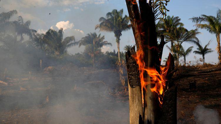 La municipalité d'Iranduba (Brésil) dans la jungle amazonienne, en proie à un feux de forêt, le 20 août 2019. (BRUNO KELLY / REUTERS)