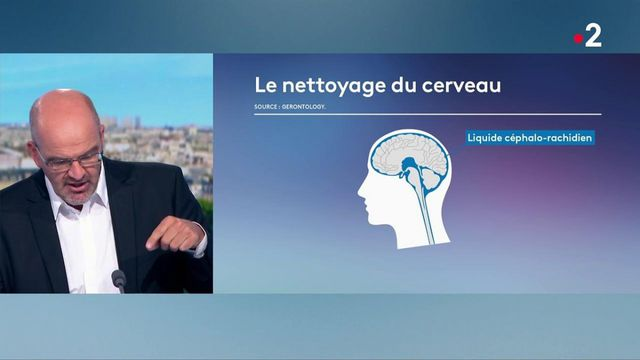 Santé : traitements, prévention, signes avant-coureurs... Mieux connaître la maladie d'Alzheimer