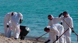 Pollution aux hydrocarbures en Corse : plusieurs plages de l'île touchées (France 2)
