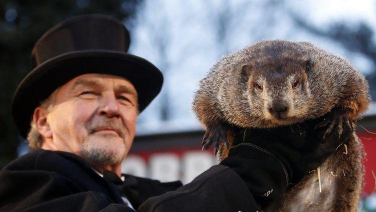 """Une marmotte participant à """"The Groundhog Day"""" à Punxsutawney (Pennsylvanie, USA), le 2 février 2017. (DAVID MAXWELL / EPA)"""